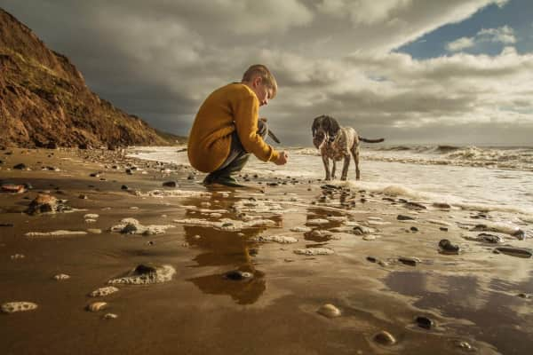 Best friends playing fetch on the beach.