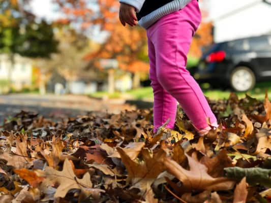 Little girl in pink leggings walking through a pile of bright colored dry fall leaves on a residential street enjoying the outdoors, autumn, fall