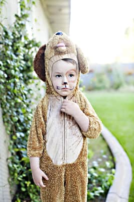 sad, puppy, boy, costume, Halloween, upset, angry, unhappy, pet, caucasian, halloween, costume, painting, kid, kids, face painting, happy kid, kids fun, stylish kid, trick or treating, outdoors, autumn, child, boy, fall, play, kid, dress up, wild thing, max costume, pretend, costume