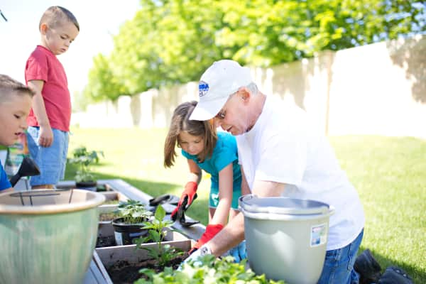 farmer, farming, grandpa, farm, garden, agriculture, gardening, farm life, colorful, summer, salad, vegetable garden, vegetables, healthy food, vegetarian food, veggies, summer squash, radishes, kale, Caucasian, kid