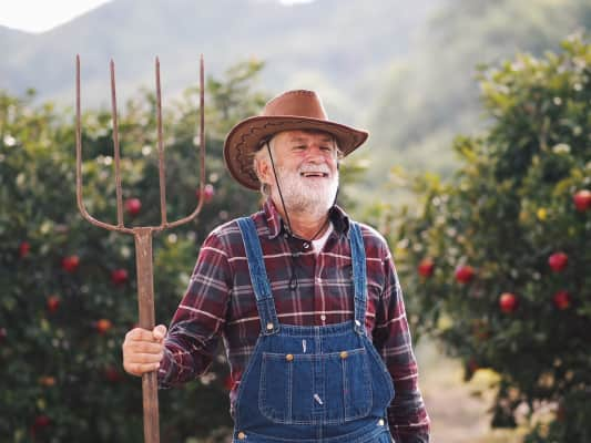 Happy apple orchard worker