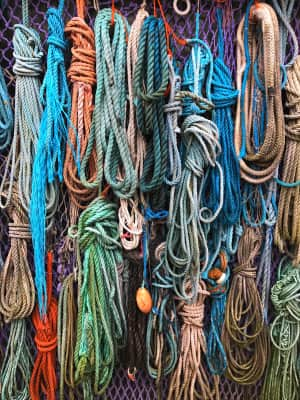 Ropes found at the Beach