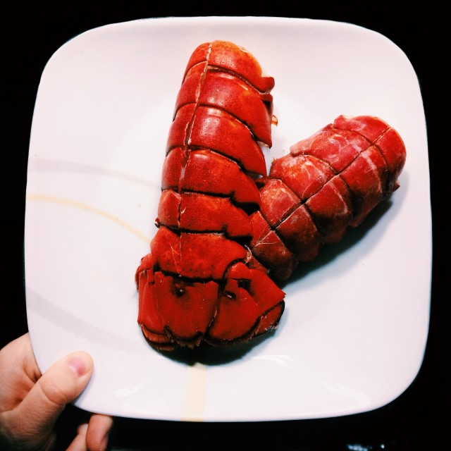Free authentic lobster photo on Reshot