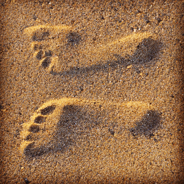 Free authentic footprints photo on Reshot