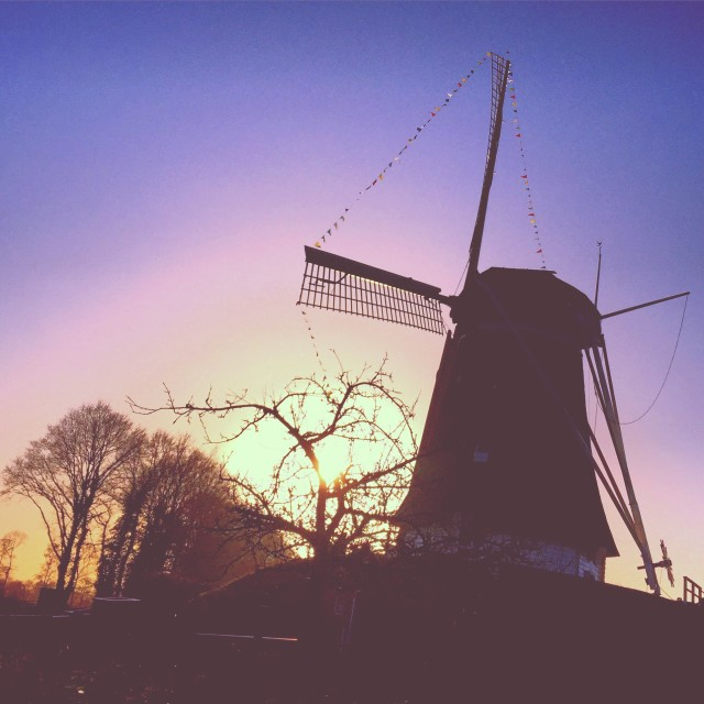 Free authentic windmills photo on Reshot