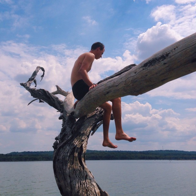 Young man in a tree by a lake