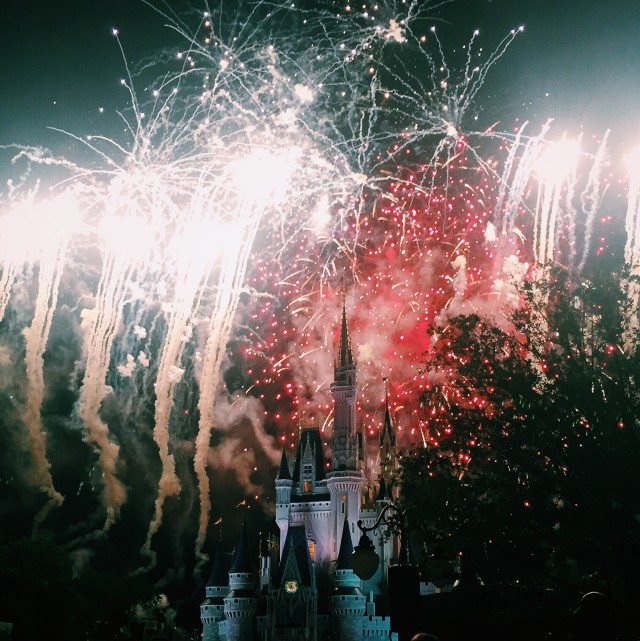 Wishes // Magic Kingdom