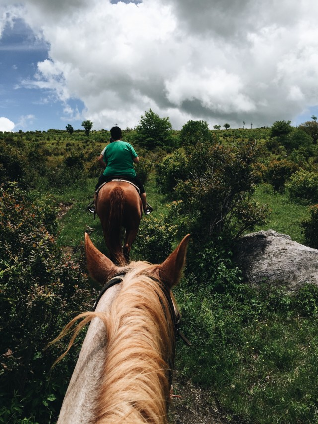 Free authentic horse riding photo on Reshot