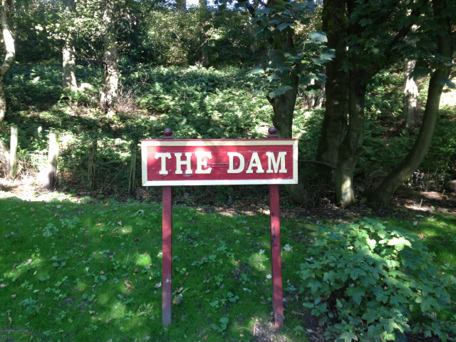 the dam wooden sign