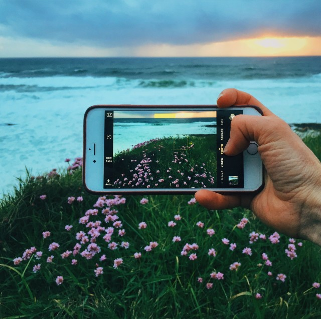 iPhone 6 plus capturing the wild flowers along the Wild Atlantic Way, County Donegal in Ireland.