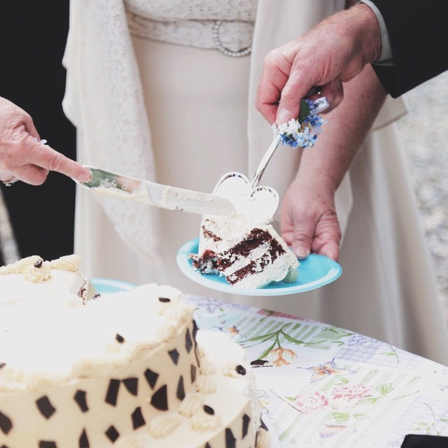 An elderly, newlywed couple cutting their wedding cake.