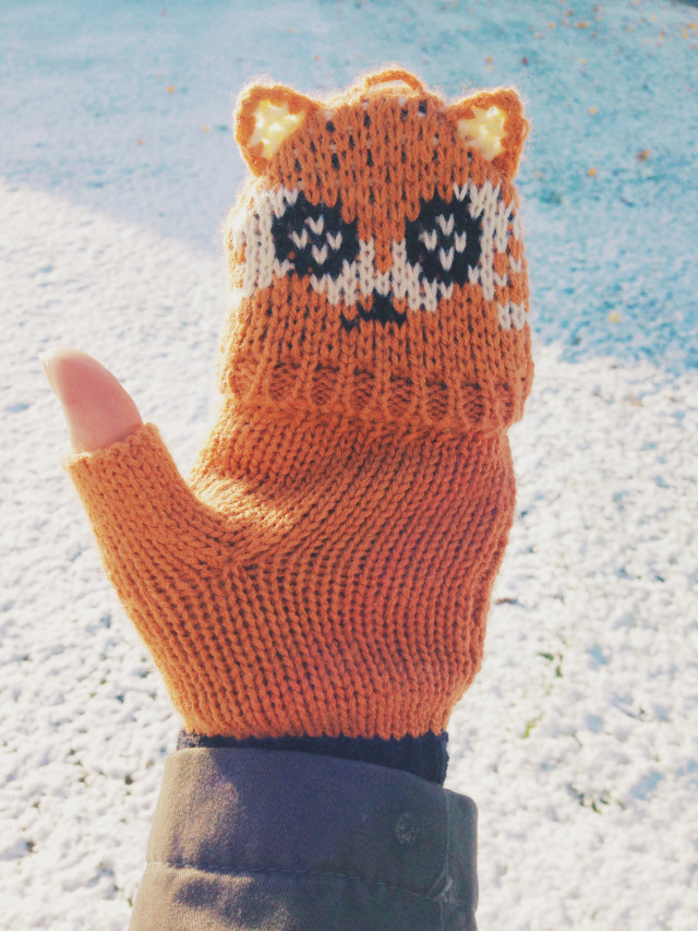 Free authentic mittens photo on Reshot