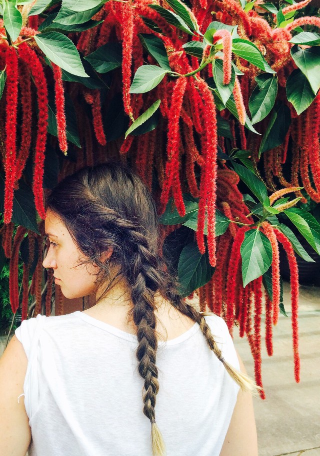 Free authentic braids photo on Reshot
