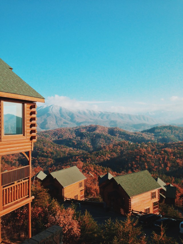 fall + cabins