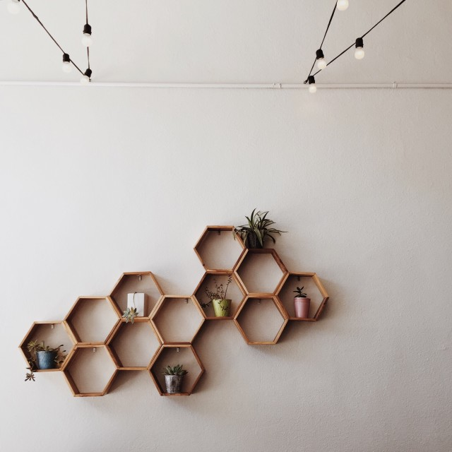Honeycomb shelving with succulents.