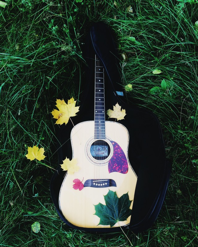 Autumn guitar