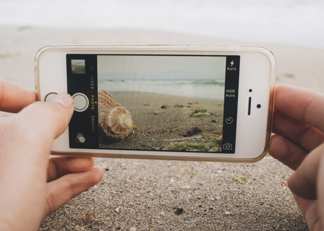 Free authentic shell photo on Reshot