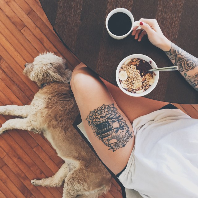 Puppies and acai bowls
