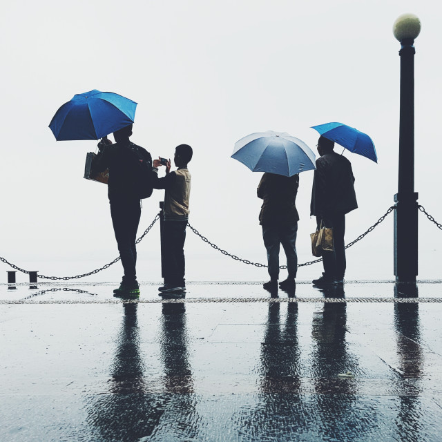 On a blue rainy day you need an umbrella