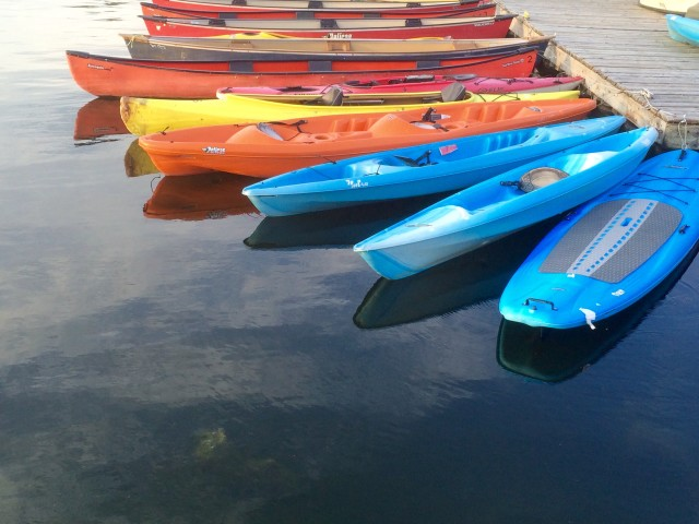Rainbow of kayaks tied at the dock.
