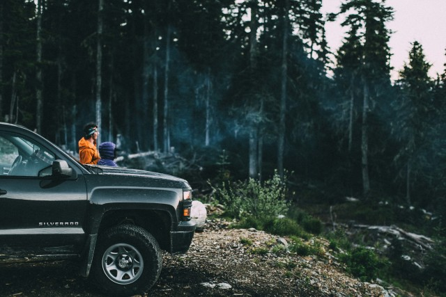 truck in forest