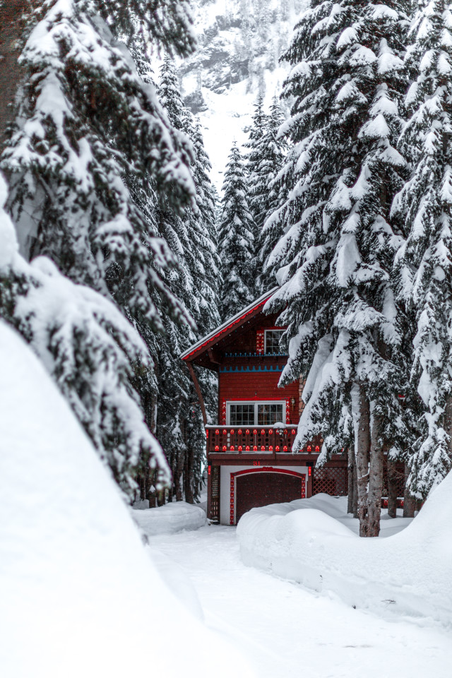 Red cabin in the snow next to covered trees with a plowed driveway in the moutnains