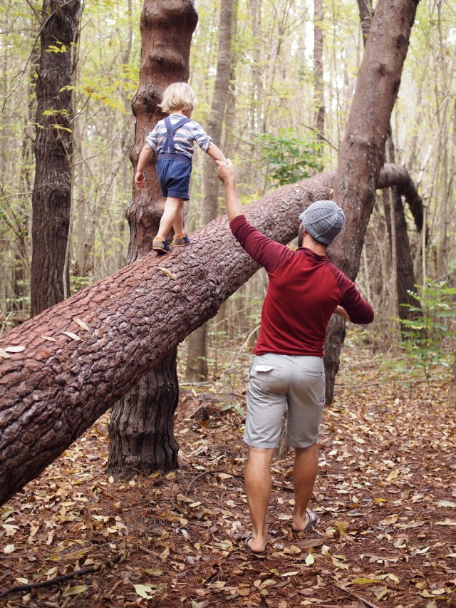 Father helping little son walk across fallen log
