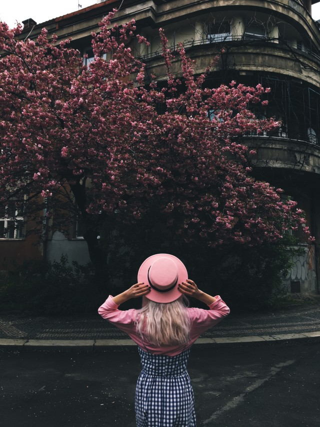 Rose and pink hat