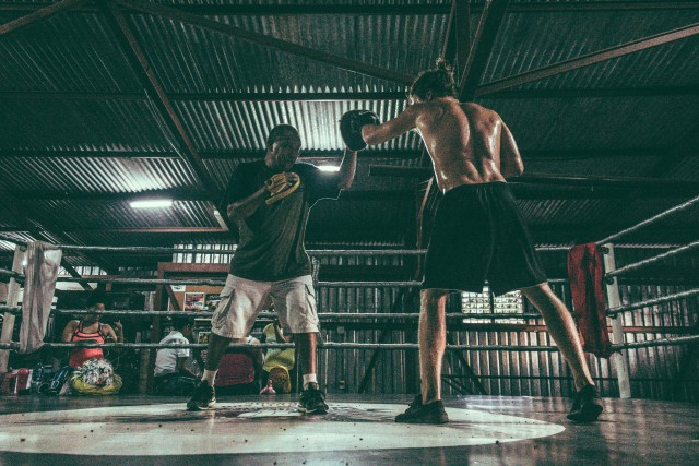 Free authentic fight photo on Reshot