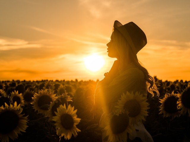 Young beautiful blonde woman standing in sunflower field. Sunset background. Sexy sensual portrait of girl in straw hat and white summer dress.