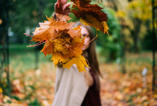 Woman dropped colorful leaves