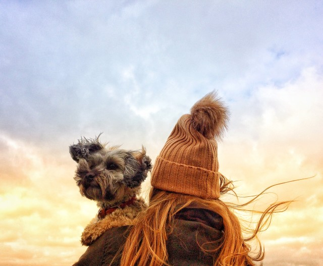 A rear view of fashionable young girl wearing a woolly bobble hat and holding her scruffy pet dog on her shoulder on a windy day in autumn or fall