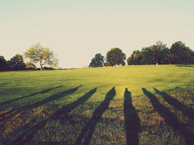 The Long Shadows