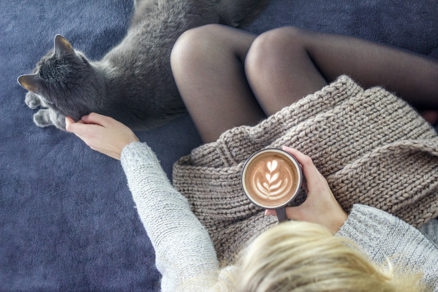 Girl with a cup of coffee and cat near, warm clothes, cozy moments, drink, woman, home, fall, Autumn, winter, weather, cold, care, breakfast, cappuccino, hot, brown, beverage, food, black, closeup, aroma, morning, fresh, caffeine, cream, above, bright, background, close up, copy space, still life, taste, full, dark, elegant, romantic, western, aromatic, gourmet, tasty, delicious, beverages, sugar, tenderness, woman, pet, cosy, warm, bedding, rest, relaxation, relax, resting, woman, one