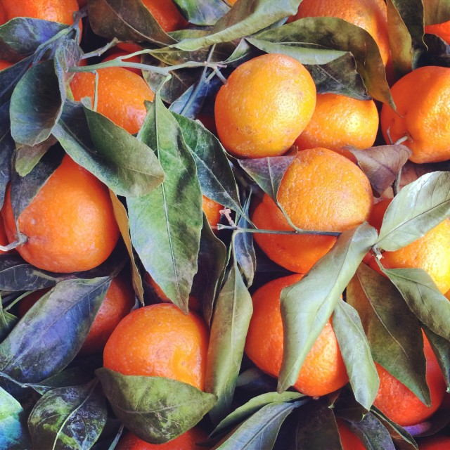 Close up of oranges