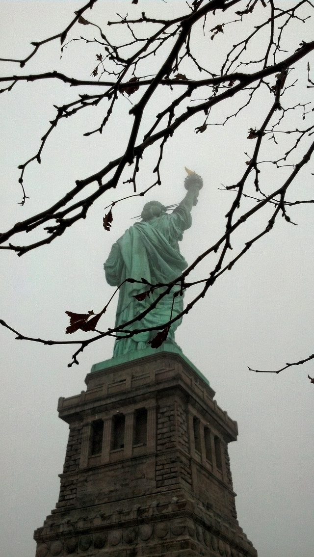Camera view from behind, looking up at Lady Liberty and her torch through some branches on a grey, overcast day. An American symbol of hope and freedom.