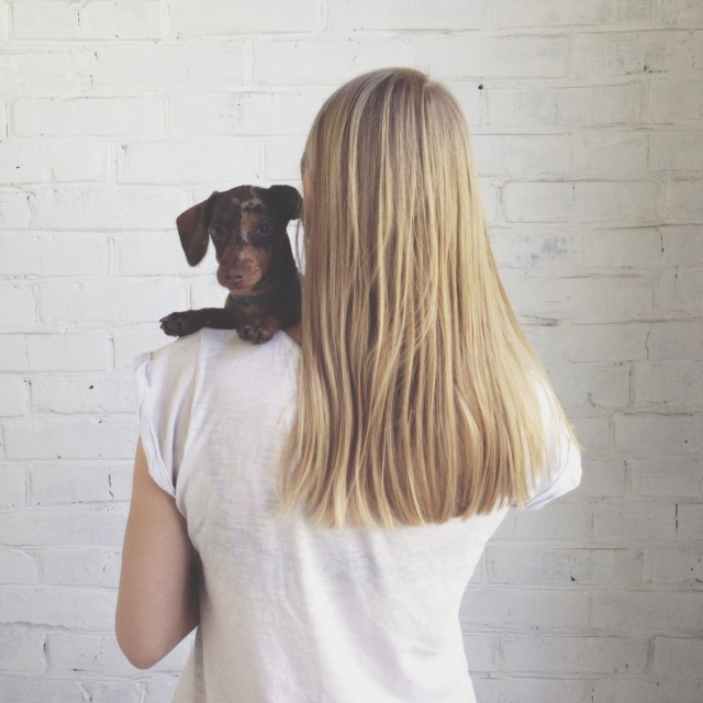 blonde girl with a little dog