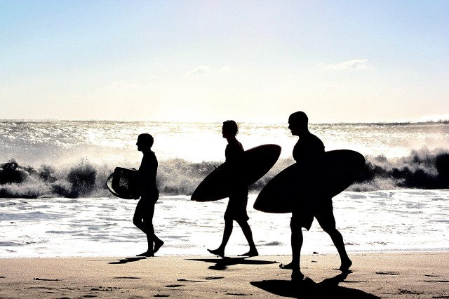 Surf Silhouettes
