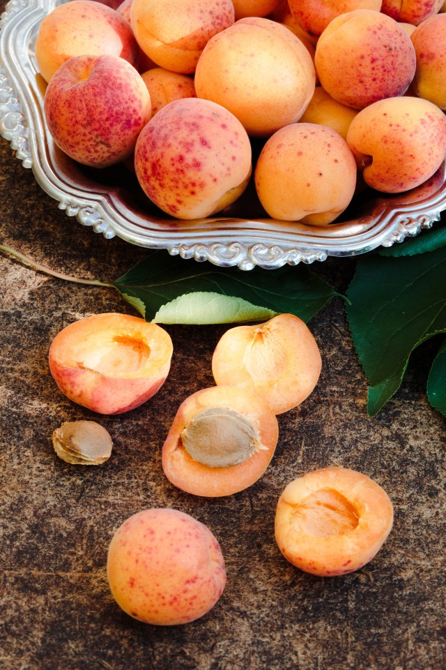 Fresh apricots straight from the garden
