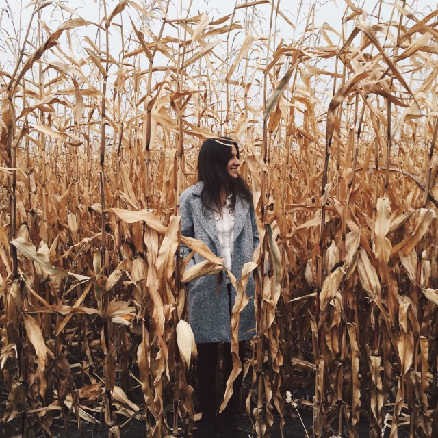 On the field of corn