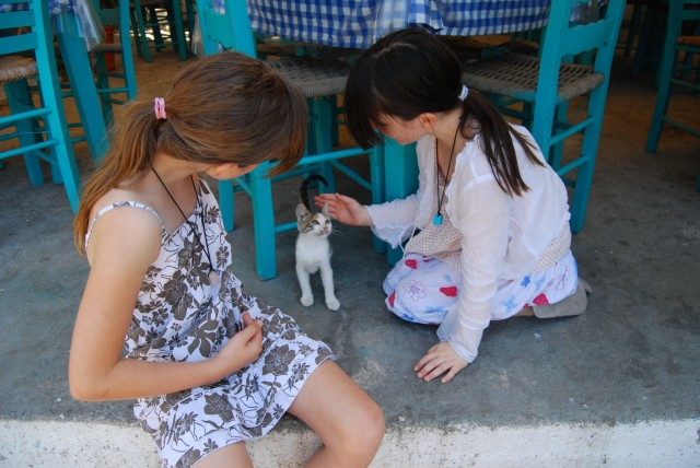 Two girls in taverna playing with kitten
