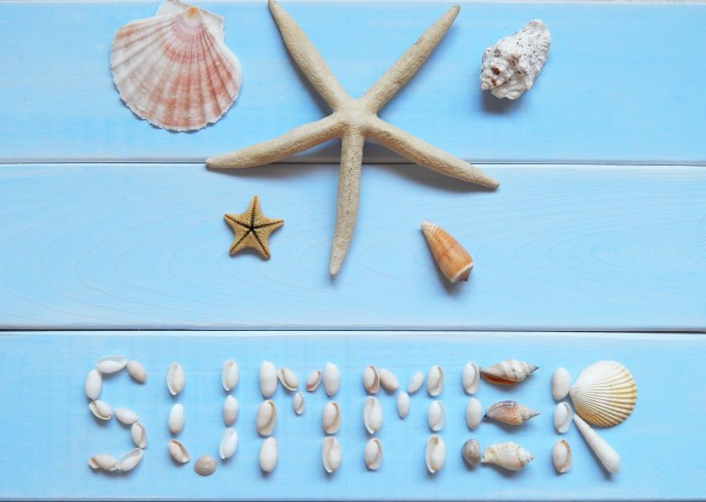 Summer time 🐚