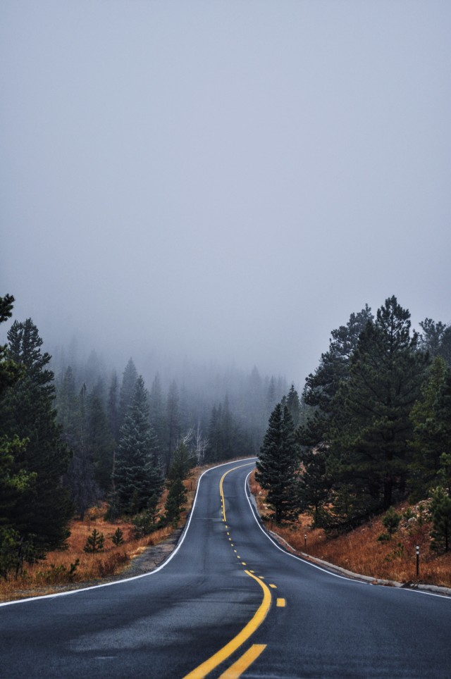 Foggy, rainy day in Rocky Mountain National Park