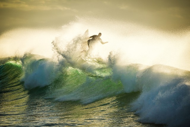 Surfs up and this guy wasted no time in the early morning light!