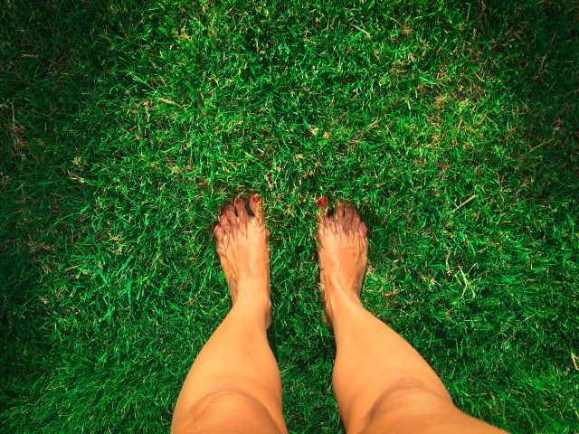 Looking down at woman's feet on green grass