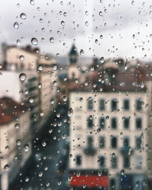 Free authentic raindrops photo on Reshot