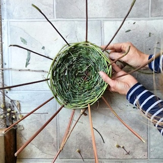 Hands weaving basket,art,craft,nature,basketry,hobby,hands in frame,creative,nature,natural,handmade,style,top view,workspace,still life