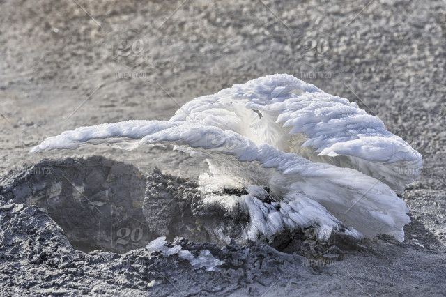 Hot steam from a volcanic vent in the ground, freezes up