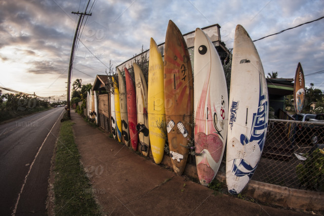 A decorative fence made of old windsurfing boards  Captured