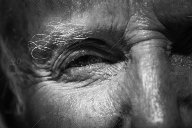 when you are old and grey